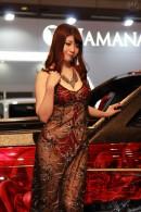 AIWA(1)